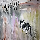 at the sheepdog trial by Claudia Dingle
