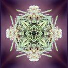lavendar goddess by Lisa Hildwine