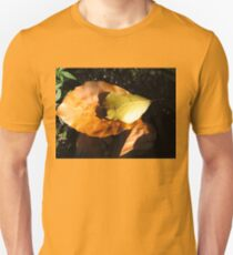 Russet Autumn Leaves - Close-up T-Shirt