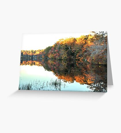 Lakeside, South County Greeting Card