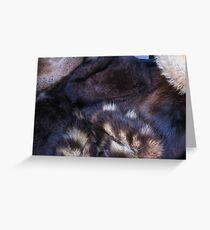 animal fur Greeting Card