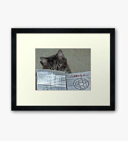 Don't recycle me! Framed Print
