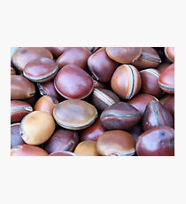 African seeds Photographic Print