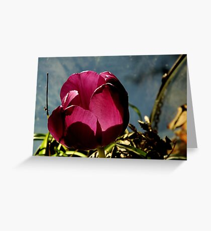 Flower in Glass Greeting Card