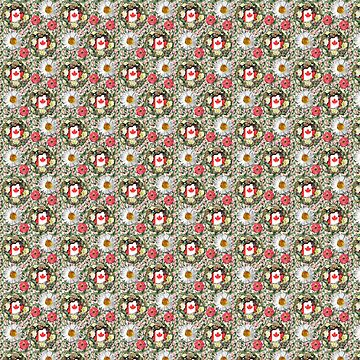 Canadian flag, coat of arms, seamless pattern by devnenski