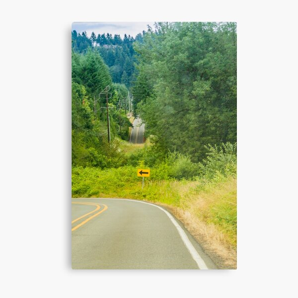 What happened to the Road? Metal Print