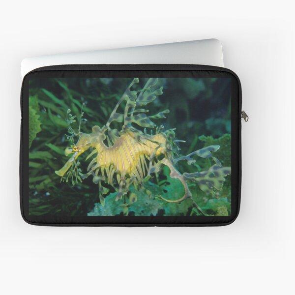 Leafy Seadragon Laptop Sleeve