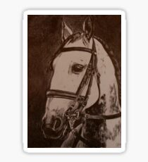 Lusitano Horse Sticker