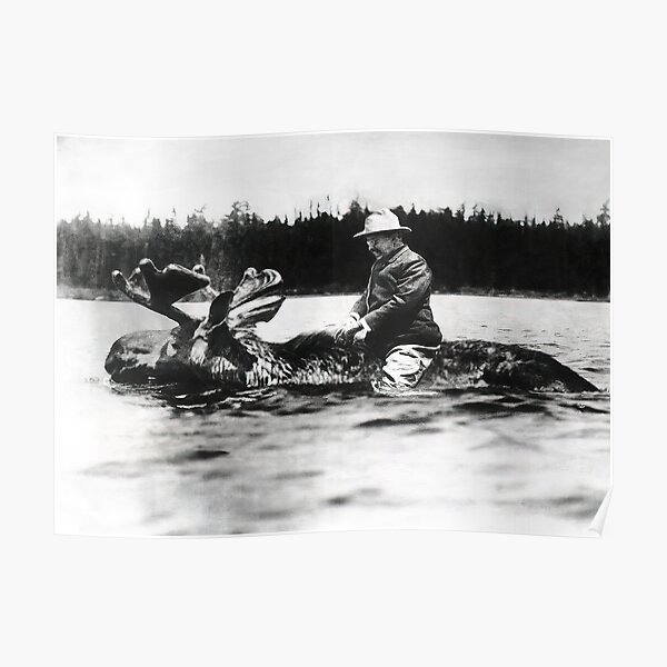 Teddy Roosevelt Riding a Moose Black and White Vintage Art Poster