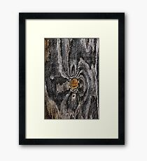 Wood knot .2 Framed Print