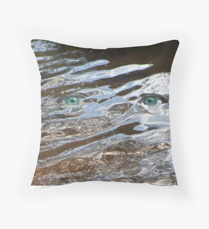 Eyes of the Storm Throw Pillow