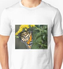 Hanging Monarch Butterfly  T-Shirt