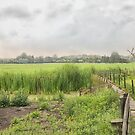 Dutch Countryside  by Johanna26