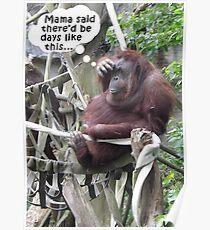 Funny Orangutang With a Headache Poster
