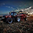 Catching Corn by Steve Baird