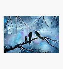 Once Upon a Misty Morning Photographic Print
