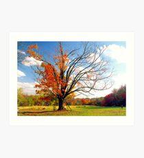 The Gina Tree Art Print
