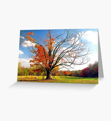 The Gina Tree Greeting Card