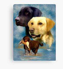 Labrador Retrievers Canvas Print