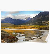 Lamar Valley in Autumn Poster