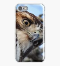 Hawk-Eye iPhone Case/Skin