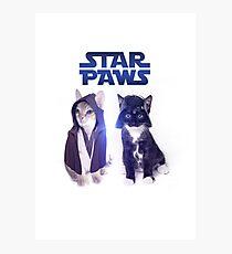 Star Wars Cats Photographic Print