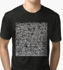 Snowstorm Tri-blend T-Shirt
