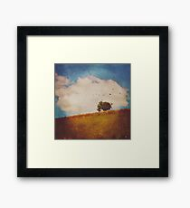 A Beautiful Afternoon Framed Print