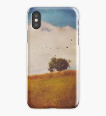 A Beautiful Afternoon iPhone Case/Skin