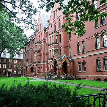 Harvard by sholder