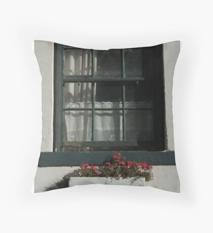 Window and Flowers Throw Pillow