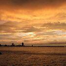 Sandusky Coal Dock Sunset 2 by Shawna Rowe