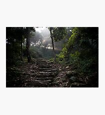 Stairs to the mountain  Photographic Print