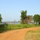 Trail to Lake Texoma by Ben Waggoner