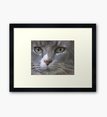 A Most Serious Matter Framed Print
