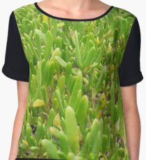 Coastal Flora Women's Chiffon Top