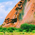Uluru Ayres Rock Painted By The Rains by Ronald Rockman