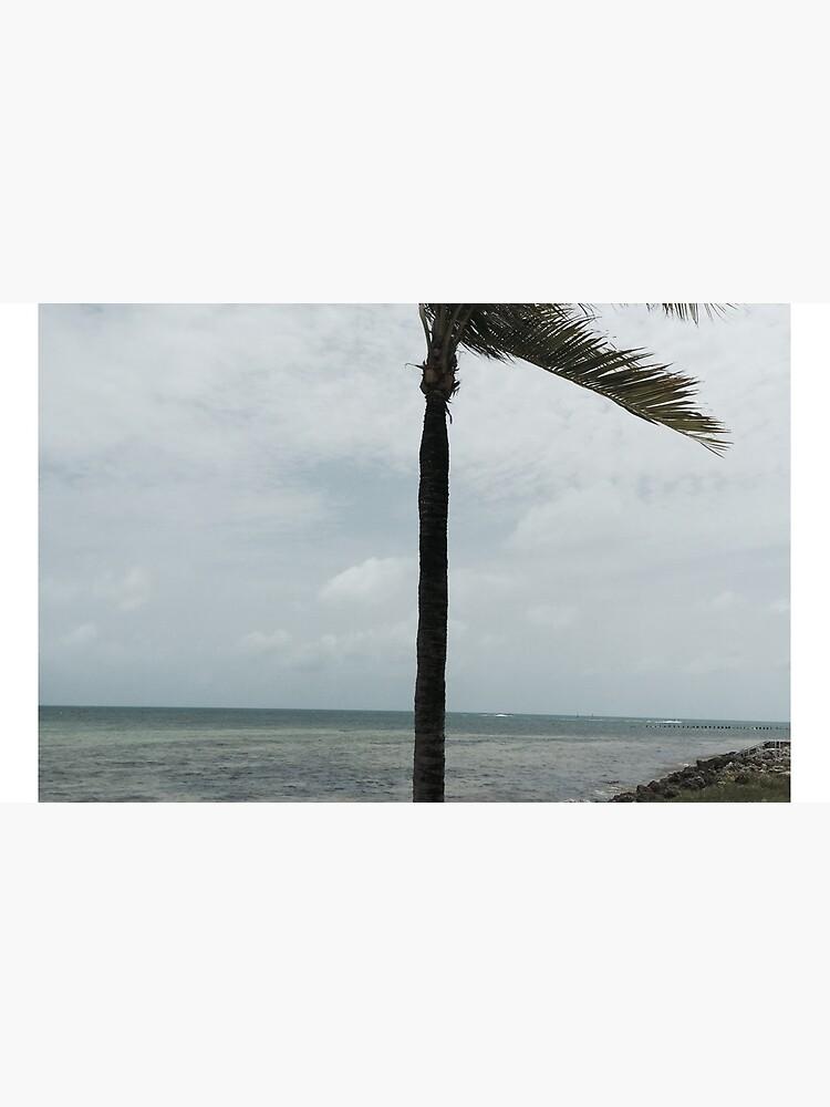Luftiger Nachmittag in Key West von Strength8
