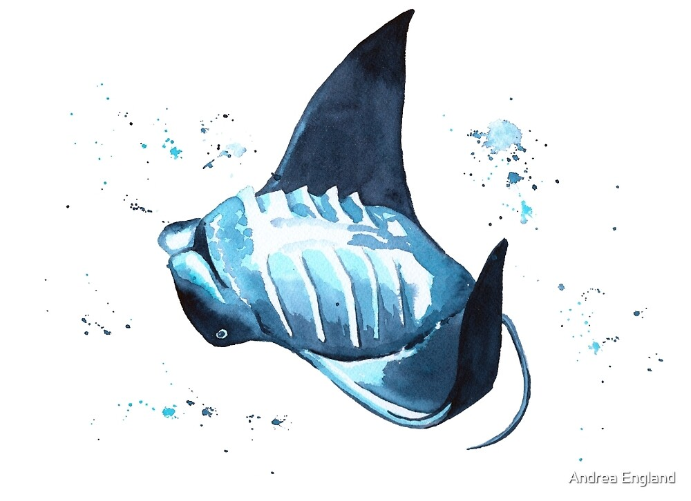 Manta Ray Underwater Dance by Andrea England