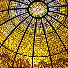 Daniel Stowe Arboretum - Dome by mrthink