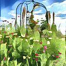 Poppies by David Bath
