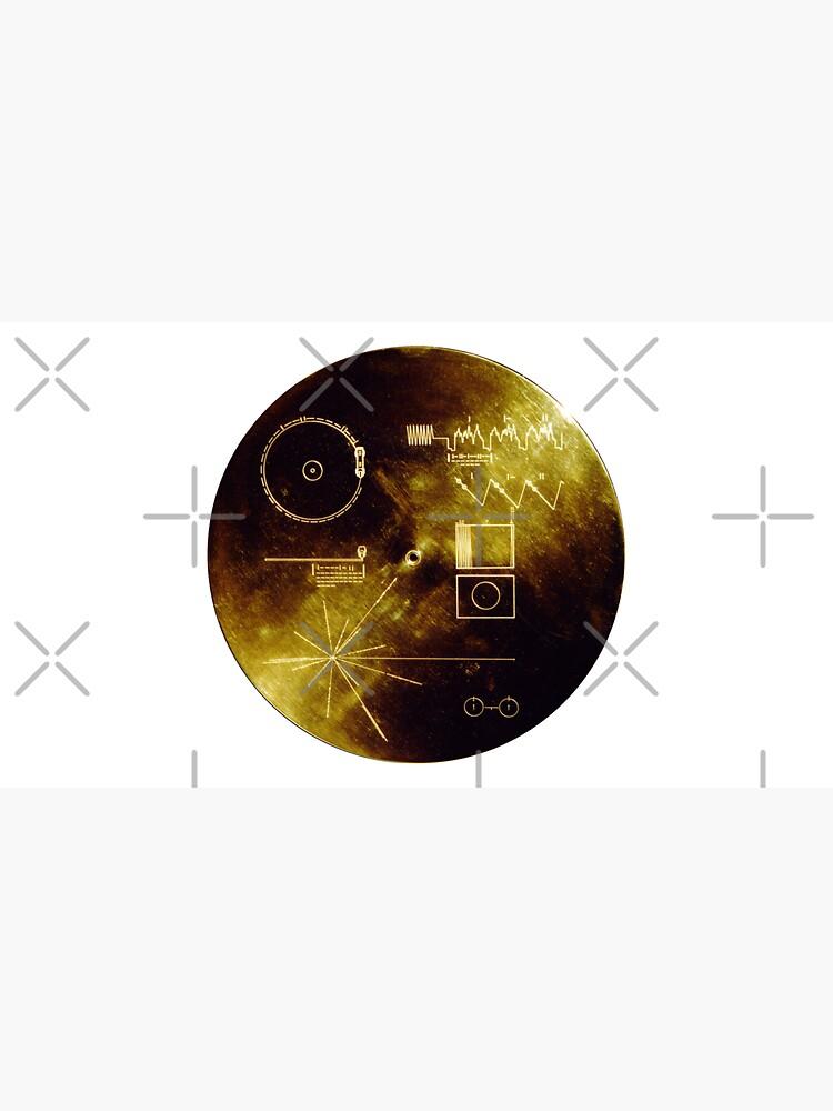 Voyager Spacecraft Golden Record by jutulen