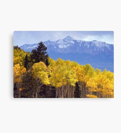 Mount Wilson Canvas Print