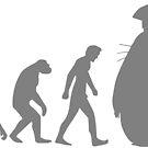 Evolution totoro by duub qnnp