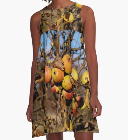 Apple tree A-Line Dress