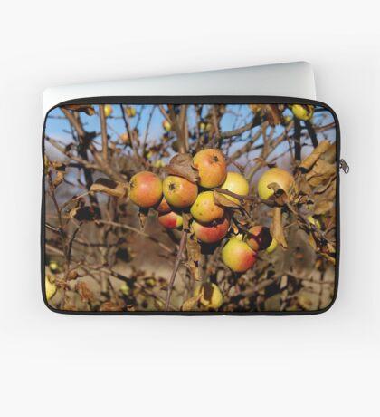 Apple tree Laptop Sleeve