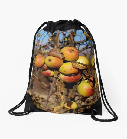Apple tree Drawstring Bag