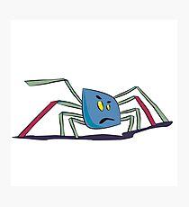 Kleine Spinne Photographic Print
