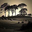 "Kenmount Pt2  ceann-achadh ""field on a headland"" by Charles  Staig"