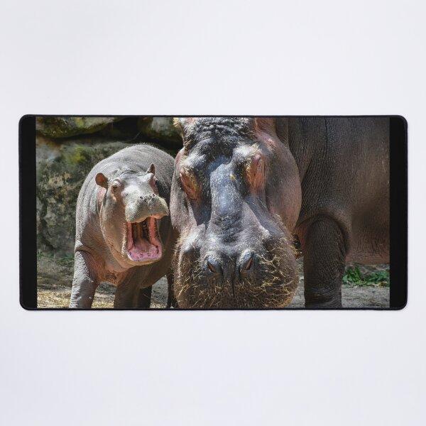 Hippo Desk Mat